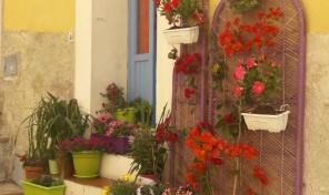 Portoferraio, caratteristico in centro storico (rif.500)