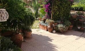 Porto Azzurro, Quadrilocale con giardino (rif.56)